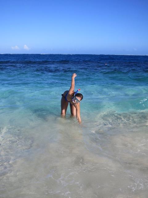 Cayo Arena Paradise Island