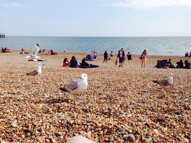 Brighton,Brighton il mare vicino Londra